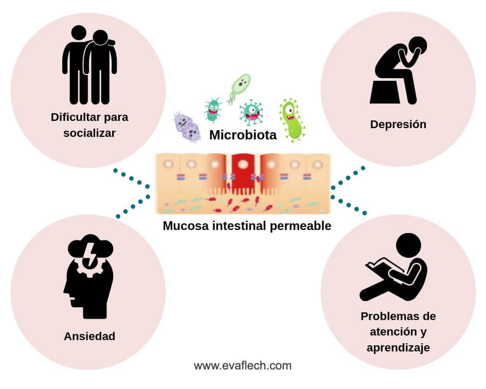 Permeabilidad intestinal y enfermedades mentales.